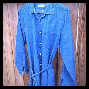 Taylor Stitch Shirt Dress